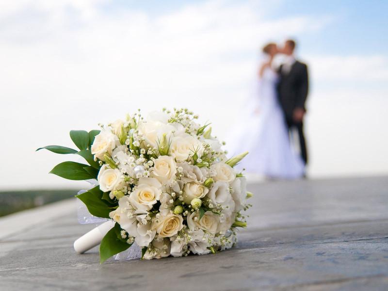 Dream Shuttles Wedding